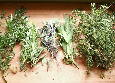 El Trebol Products Botanica